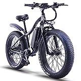 ride66 Vélos électriques VTT pour Homme et Femme, Fat Bike Electrique 26 Pouces 48V 1000W 16Ah Montagne Ebike (Noir)